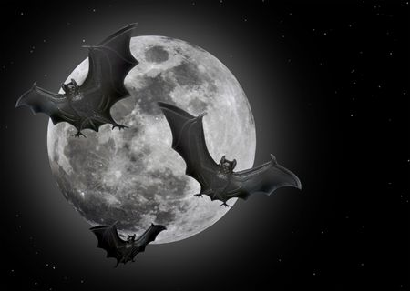 Bats flying in front of a full moon.