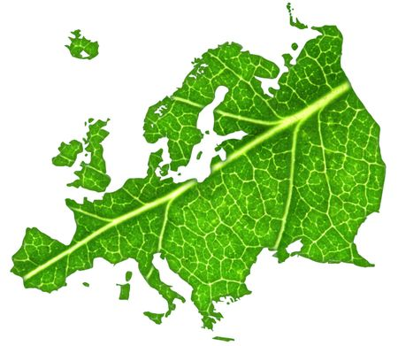 Macro of a green maple leaf cut out in the shape of Europe.