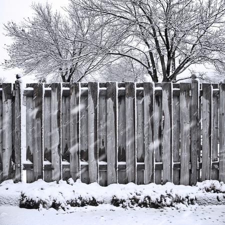 Wet snow storm covering wood fence and trees Фото со стока