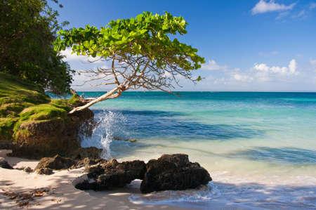 antigua: Beautiful Caribbean Beach Stock Photo