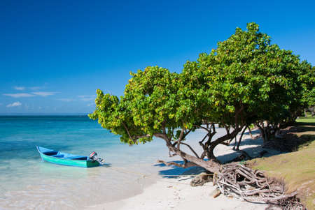 republic dominican: Nice Caribbean Beach, Dominican Republic Stock Photo