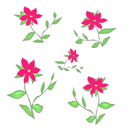 pink flowers and leaves  scattered on white background
