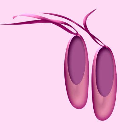 리본이 달린 예쁜 분홍색 발레 슬리퍼 한 켤레 스톡 콘텐츠