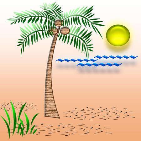 beach vacation palm tree on sandy beach