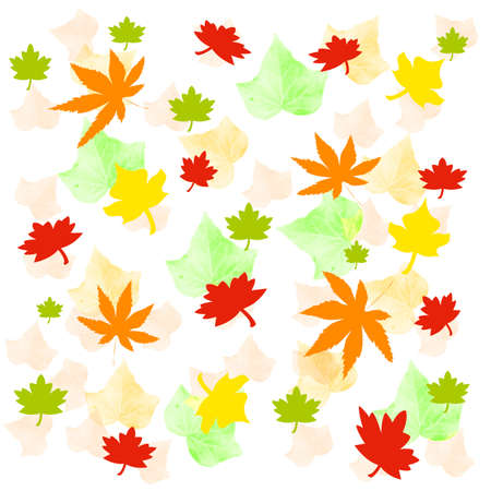 waft: autumn leaves  scattered  on white background
