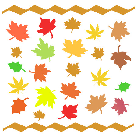 waft: colorful autumn leaves scattered  on white background