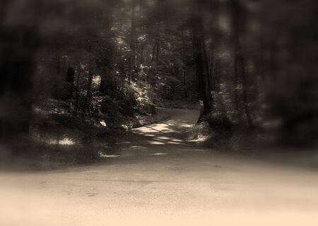 gloom: spooky secluded cemetery road in the gloom Stock Photo