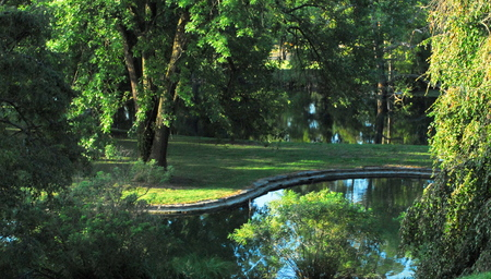 Historic Spring Grove  cemetery  secluded pond with trees