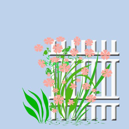 flowers and vines growing on garden fence illustrated