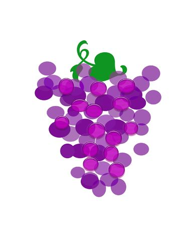 colorful  purple grapes  on white background illustration