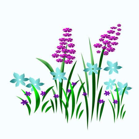 colorful spring flower garden  on white  background