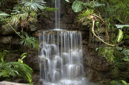 beautiful  sparkling waterfall surrounded with tropical  plants
