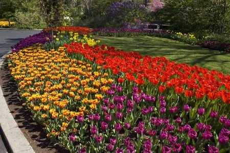 mulch, pile, pitchfork,wheelbarrow,garden,park,landscaping,work,spring,dirt,tools Stock Photo