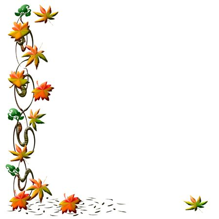 woody: colorful fall leaves and vines on white background illustration Stock Photo