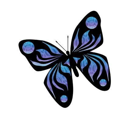 flit: colorful blue butterfly on white background illustration