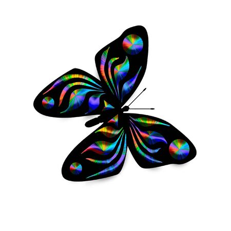 flit: colorful rainbow butterfly on white background illustration