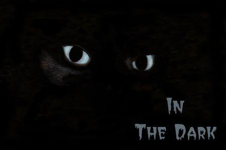 eerie cat's eyes in the dark Halloween poster Stock Photo - 7685064