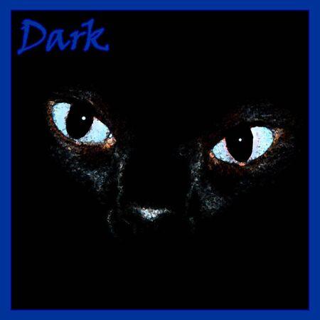 cat partial face closeup on black illustration Stock Illustration - 7734564