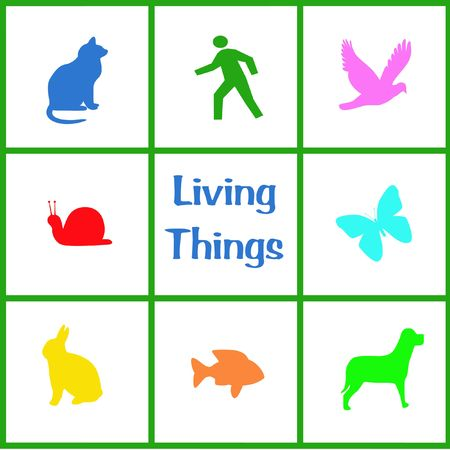 living things: colorful assorted living things poster illustration in grid