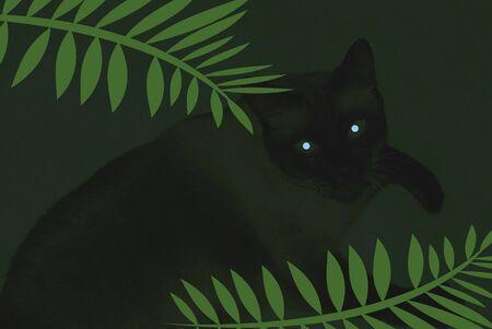 어두운 배경 일러스트에 고양이의 오싹한 이미지