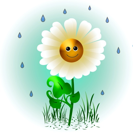 one smiling daisy in the rain illustration Stock Illustration - 8258875