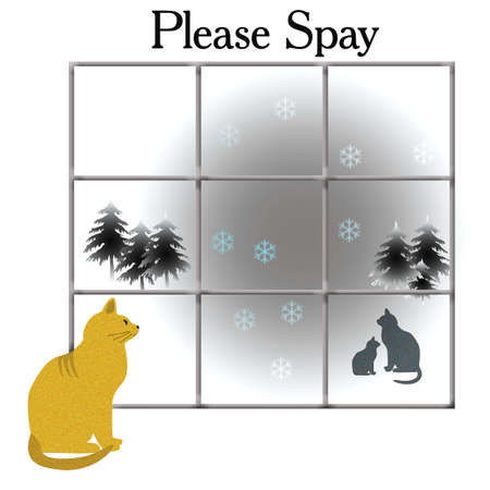 feral: feral cat with kitten please spay poster illustration