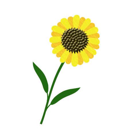 large yellow sunflower on white background illustration
