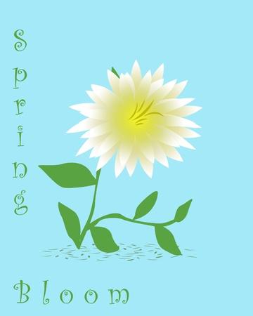 white Dalia  flower with yellow center illustration Stok Fotoğraf - 9171495