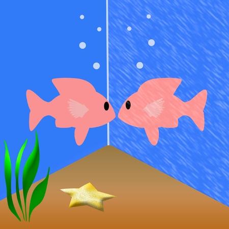 reflection mirror: aquarium fish looking at its own reflection illustration