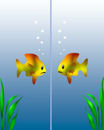 illustrated: tropical fish looking at reflection colorful illustrated