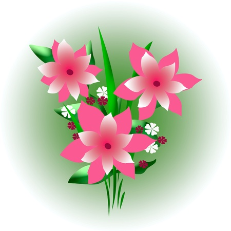 bright pink flower bouquet on gradient background illustration Stock Illustration - 13136991