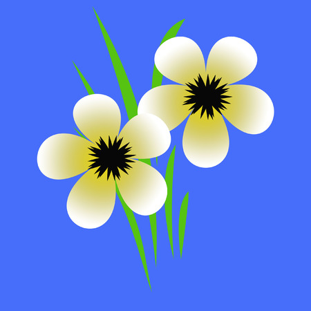 centers: pale yellow flowers with black centers illustration