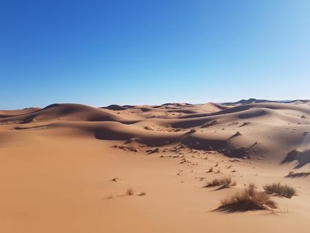 brown sand Stock fotó