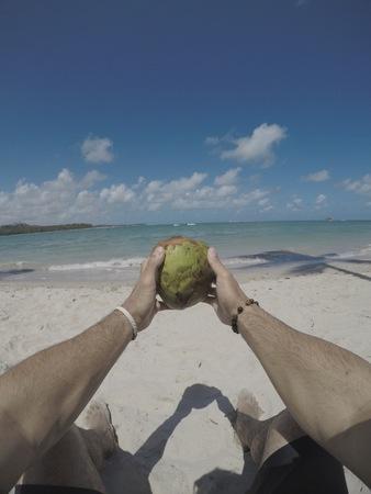 green coconut fruit Standard-Bild - 124515018