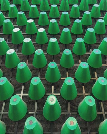 green plastic cup lot