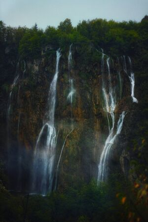 nature photography of water fall and trees