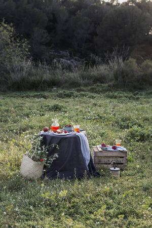 table in a meadow