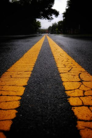 selective color photo of yellow road lines