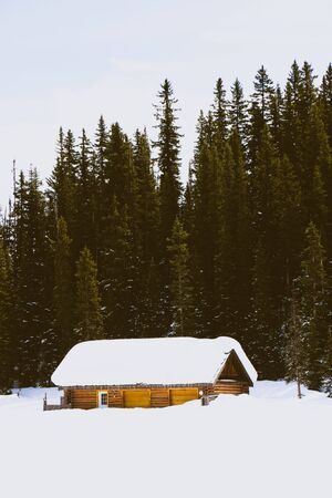 snow covered wooden house near trees during daytime Imagens