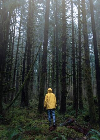 person standing at forest