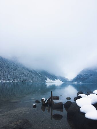 snow on black stone near trees during fog Stok Fotoğraf