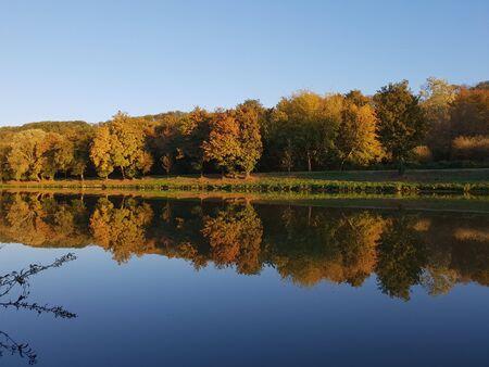 Calm water near trees Stock Photo
