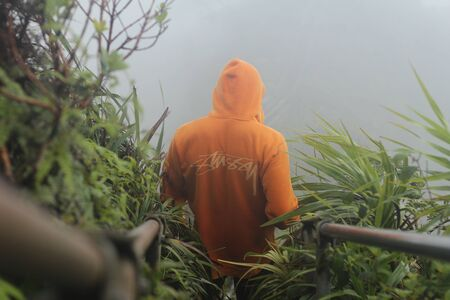 person wearing orange hoodie descending on stairs