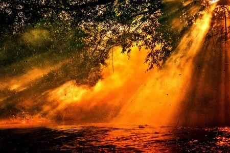 orange sun rays at a pond 免版税图像