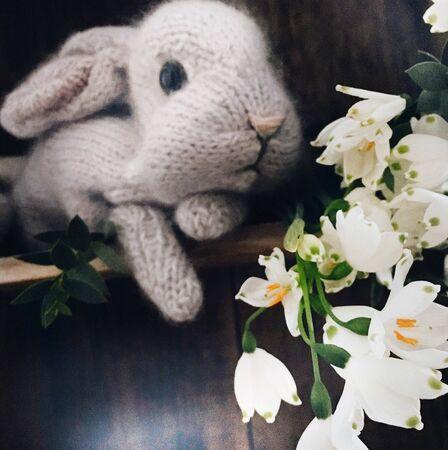 white rabbit plush toy and white petaled flowers