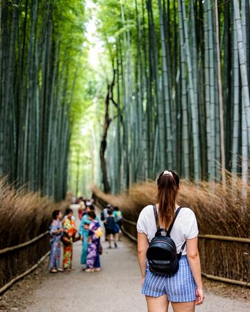people in walkway between bamboo plants Archivio Fotografico - 131895429