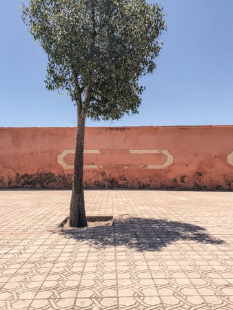 Red wall Imagens
