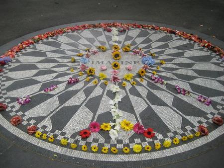 Imagine Flowers