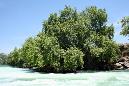 Near manavgat river 版權商用圖片