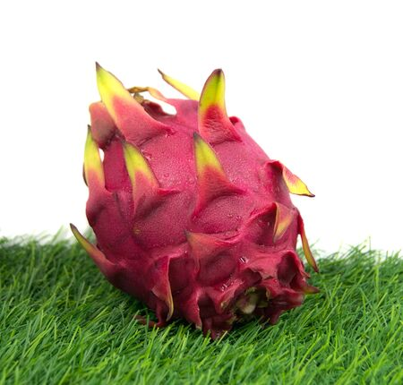 Vivid Dragon fruit photo